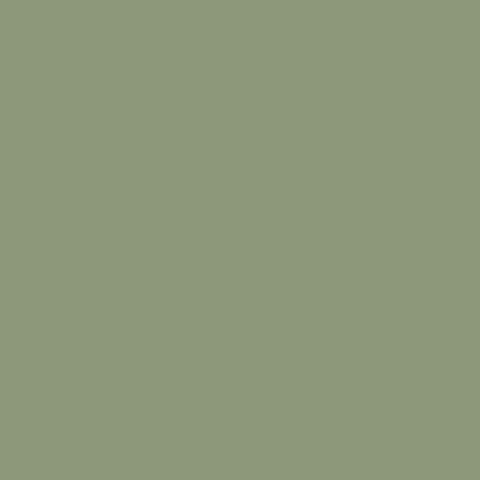 Vert Céladon